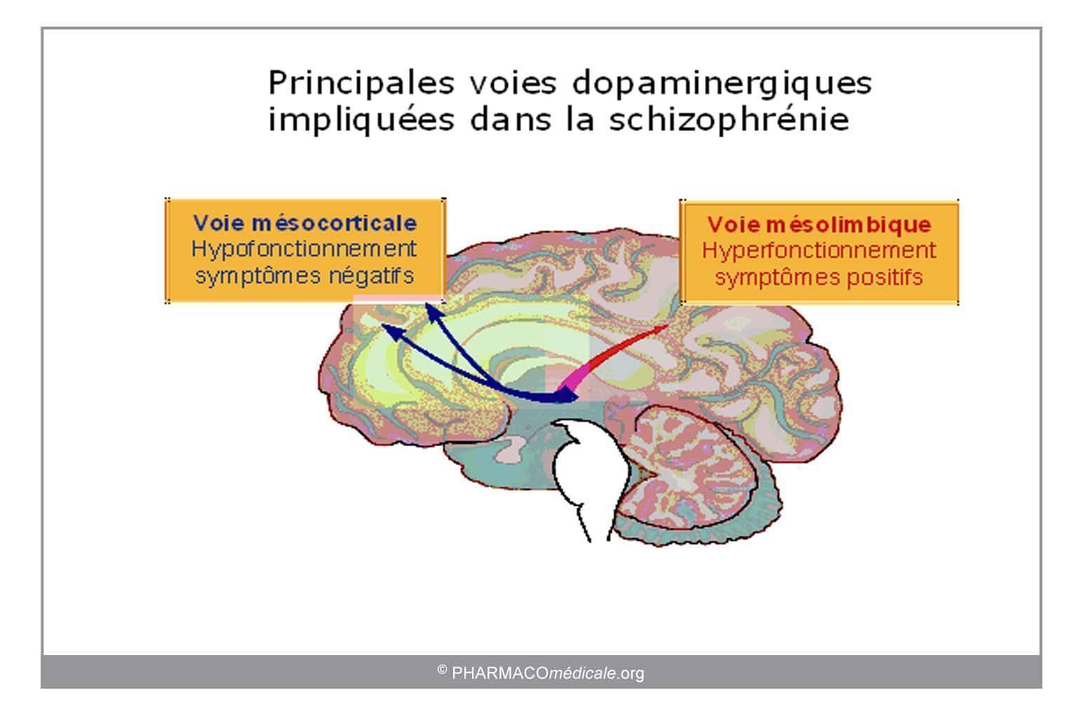 Antipsychotiques les points essentiels for Dans cette voie